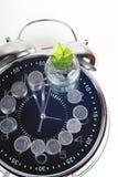 Νομίσματα με τις εγκαταστάσεις και το ρολόι, που απομονώνονται στο άσπρο υπόβαθρο Έννοια αποταμίευσης Στοκ φωτογραφίες με δικαίωμα ελεύθερης χρήσης