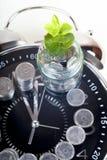 Νομίσματα με τις εγκαταστάσεις και το ρολόι, που απομονώνονται στο άσπρο υπόβαθρο Έννοια αποταμίευσης Στοκ εικόνα με δικαίωμα ελεύθερης χρήσης