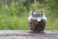 Νομίσματα στα νομίσματα γυαλιού και σωρών με το δέντρο για την επιχείρηση και το φόρο Στοκ φωτογραφία με δικαίωμα ελεύθερης χρήσης