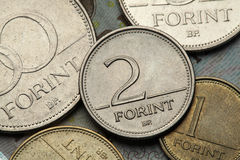 Νομίσματα της Ουγγαρίας Στοκ φωτογραφία με δικαίωμα ελεύθερης χρήσης