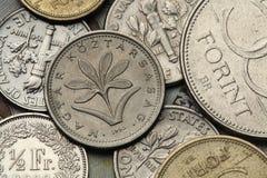 Νομίσματα της Ουγγαρίας Στοκ Φωτογραφία
