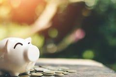 Νομίσματα τραπεζών Piggy με τα χρήματα αποταμίευσης αύξησης βημάτων σωρών χρημάτων Στοκ εικόνα με δικαίωμα ελεύθερης χρήσης