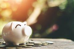 Νομίσματα τραπεζών Piggy με τα χρήματα αποταμίευσης αύξησης βημάτων σωρών χρημάτων Στοκ Εικόνες