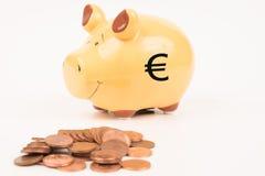 νομίσματα τραπεζών piggy Στοκ Φωτογραφίες