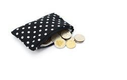 Νομίσματα τσαντών που απομονώνονται στο άσπρο υπόβαθρο Στοκ Εικόνες