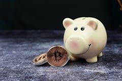 Νομίσματα χρημάτων cryptocurrency Bitcoin με μια piggy τράπεζα στοκ φωτογραφία με δικαίωμα ελεύθερης χρήσης