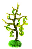νομισματικό δέντρο Στοκ Εικόνες