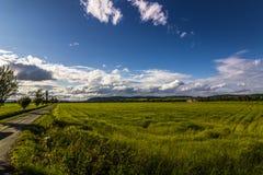 Νορβηγική αγριότητα, Νορβηγία Στοκ φωτογραφία με δικαίωμα ελεύθερης χρήσης