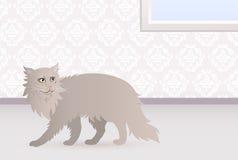 Νορβηγική γάτα Στοκ φωτογραφία με δικαίωμα ελεύθερης χρήσης