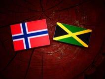 Νορβηγική σημαία με την τζαμαϊκανή σημαία σε ένα κολόβωμα δέντρων Στοκ Εικόνα