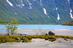 Νορβηγικό τοπίο Στοκ εικόνες με δικαίωμα ελεύθερης χρήσης