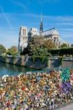 Νοτρ Νταμ, Παρίσι Στοκ εικόνα με δικαίωμα ελεύθερης χρήσης