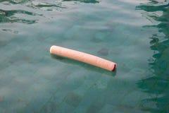 Νουντλς νερού ή woggle στην πράσινη λίμνη Στοκ Φωτογραφία