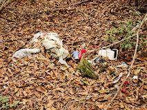 Ντάμπινγκ απορριμάτων στο δάσος Στοκ Εικόνες