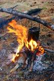 Ντέρπι στις πυρές προσκόπων στοκ φωτογραφίες με δικαίωμα ελεύθερης χρήσης