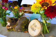 Ντεκόρ δεξίωσης γάμου Themed δέντρων στοκ φωτογραφία με δικαίωμα ελεύθερης χρήσης