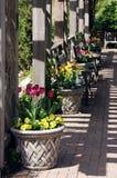Ντεκόρ κήπων στοκ φωτογραφία με δικαίωμα ελεύθερης χρήσης