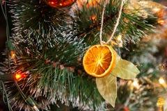 Ντεκόρ χριστουγεννιάτικων δέντρων με το ξηρό πορτοκάλι στοκ εικόνα