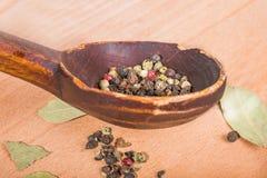 Ντεμοντέ ξύλινο κουτάλι με τα καρυκεύματα και τα φύλλα κόλπων Στοκ Εικόνα