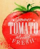 Ντομάτα αφισών Στοκ εικόνα με δικαίωμα ελεύθερης χρήσης