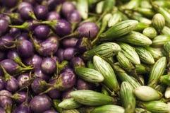 Ντομάτα: βελούδο & πράσινα φρέσκα λαχανικά Στοκ Φωτογραφία