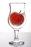 ντομάτα γυαλιού Στοκ φωτογραφία με δικαίωμα ελεύθερης χρήσης