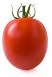 ντομάτα δαμάσκηνων Στοκ φωτογραφία με δικαίωμα ελεύθερης χρήσης