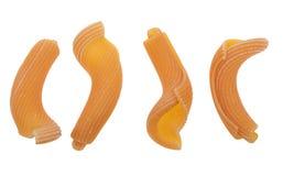 ντομάτα ζυμαρικών gigli Στοκ εικόνες με δικαίωμα ελεύθερης χρήσης