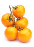 ντομάτα κίτρινη Στοκ Φωτογραφία