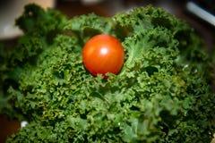 Ντομάτα και κατσαρό λάχανο Στοκ εικόνες με δικαίωμα ελεύθερης χρήσης