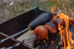 Ντομάτα και μελιτζάνα στη σχάρα για τους χορτοφάγους Στοκ Εικόνες