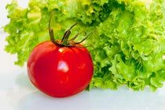 Ντομάτα και lattuce Στοκ Εικόνες