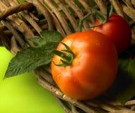ντομάτα καλαθιών Στοκ εικόνα με δικαίωμα ελεύθερης χρήσης