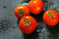ντομάτα καρπού Στοκ εικόνες με δικαίωμα ελεύθερης χρήσης