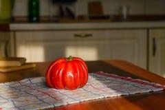 Ντομάτα καρδιών βόειου κρέατος Στοκ φωτογραφία με δικαίωμα ελεύθερης χρήσης