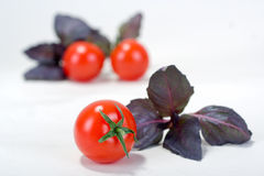 ντομάτα κερασιών βασιλικ Στοκ φωτογραφία με δικαίωμα ελεύθερης χρήσης