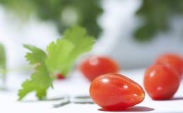 Ντομάτα κερασιών με Cilantro Στοκ φωτογραφία με δικαίωμα ελεύθερης χρήσης