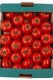 ντομάτα κιβωτίων Στοκ εικόνες με δικαίωμα ελεύθερης χρήσης