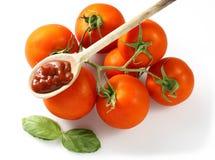 ντομάτα κουταλιών σάλτσα&s Στοκ Φωτογραφία