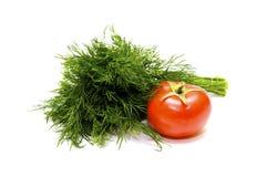 ντομάτα μαράθου Στοκ φωτογραφίες με δικαίωμα ελεύθερης χρήσης