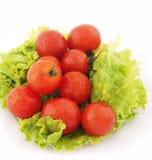 ντομάτα μαρουλιού Στοκ εικόνα με δικαίωμα ελεύθερης χρήσης