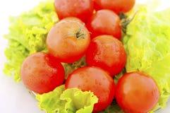 ντομάτα μαρουλιού Στοκ φωτογραφία με δικαίωμα ελεύθερης χρήσης