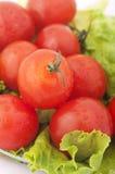 ντομάτα μαρουλιού Στοκ Φωτογραφίες