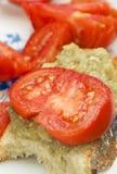 ντομάτα μελιτζάνας Στοκ φωτογραφία με δικαίωμα ελεύθερης χρήσης