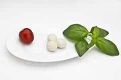 ντομάτα μοτσαρελών Στοκ εικόνα με δικαίωμα ελεύθερης χρήσης