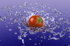 ντομάτα παφλασμών στοκ φωτογραφία