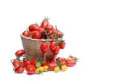 Ντομάτα που απομονώνεται Στοκ φωτογραφία με δικαίωμα ελεύθερης χρήσης