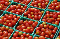 ντομάτα πώλησης στοκ φωτογραφία