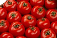 Ντομάτα σε ένα κιβώτιο Στοκ Εικόνες