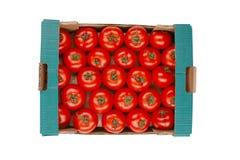Ντομάτα σε ένα κιβώτιο Στοκ Φωτογραφίες